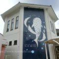 【子連れ金沢旅行記】のとじま水族館はこじんまりしていて見やすい